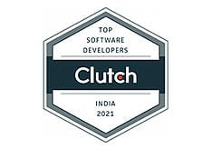 Software Developers India 2021
