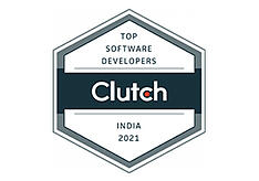 Software Developers India 2019