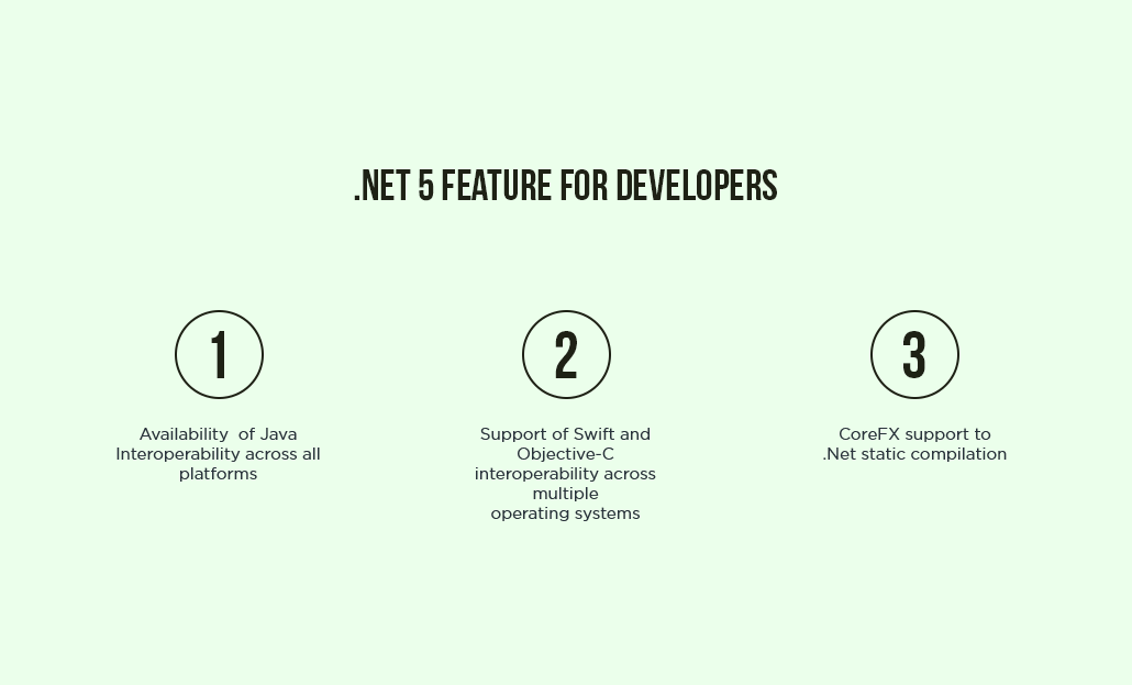 .Net 5 Feature For Developers
