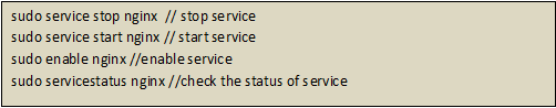 NGINX service