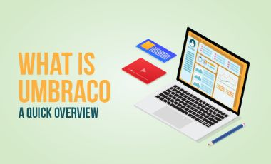 What is Umbraco: A Quick Overview