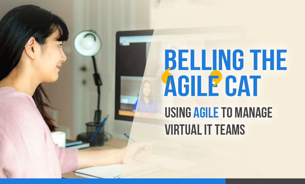 Belling the 'agile' cat - using agile to manage virtual IT teams